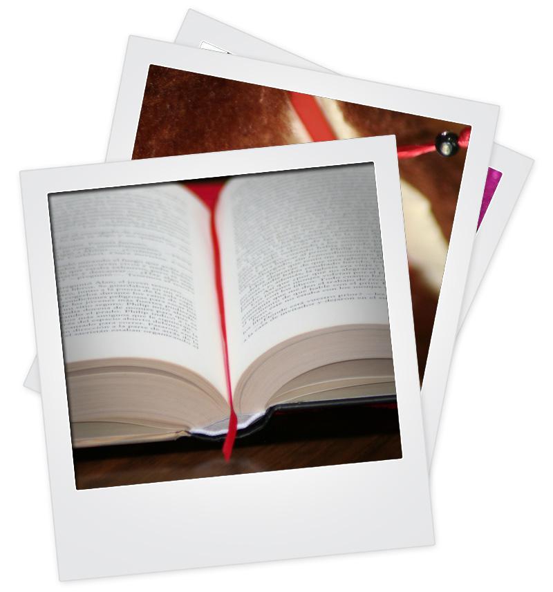 Marca páginas integrado
